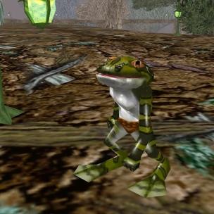 Frog 8